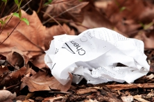 While trees are being torn down, paper is being thrown on the ground.