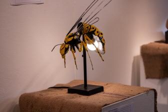 Hornet, by Jason Collmann.